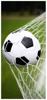 Afbeeldingen van Badlaken Voetbal